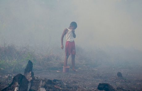 Pursuing palm oil companies isn't enough: the paper industry is complicit in Southeast Asia's haze crisis