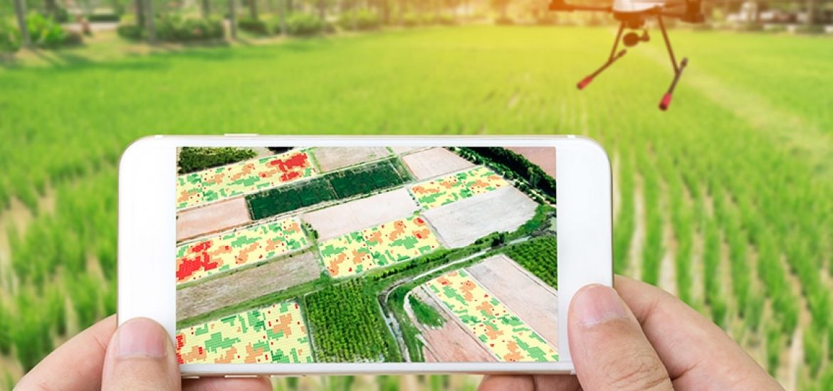 Digital agriculture: new tools for science on the farm