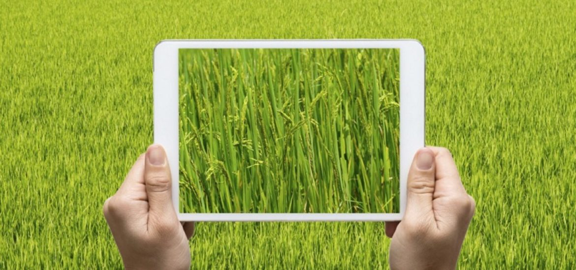 How can Agriculture 4.0 help Agroecosystems