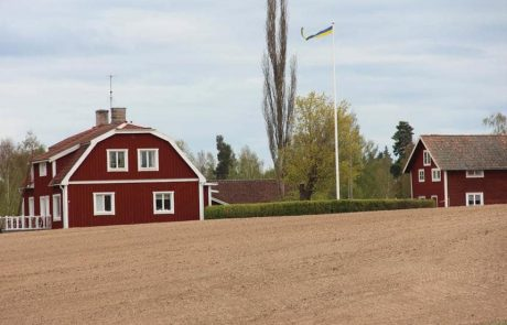 Swedish agriculture held back by man, not nature