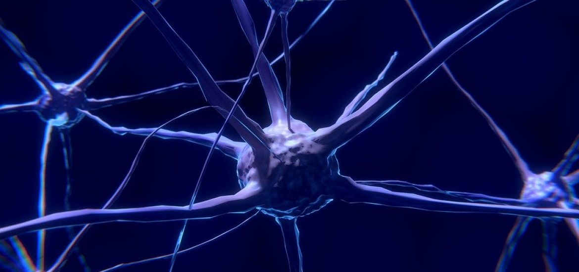 French researchers develop a prototype for an artificial neuron