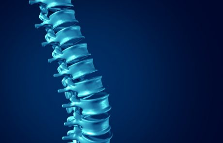 Scientists warn Japan's approval of stem cell treatment for spinal injuries is premature