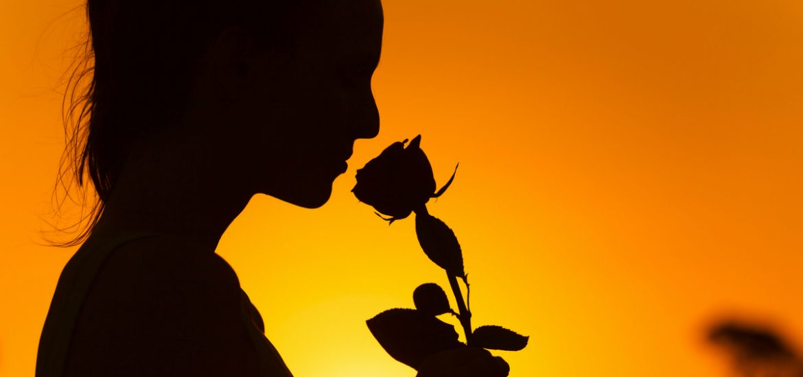 Why do roses smell so sweet? Locusts provide some insights into how we experience smell