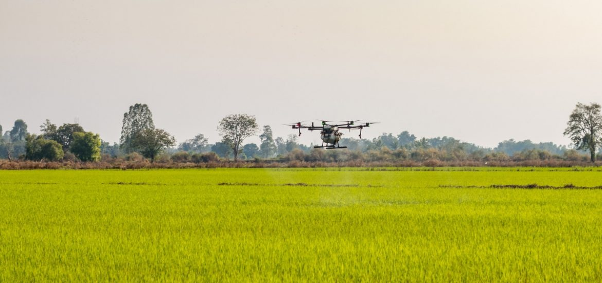 An Israeli startup is combining AI and drones to yield more fruit