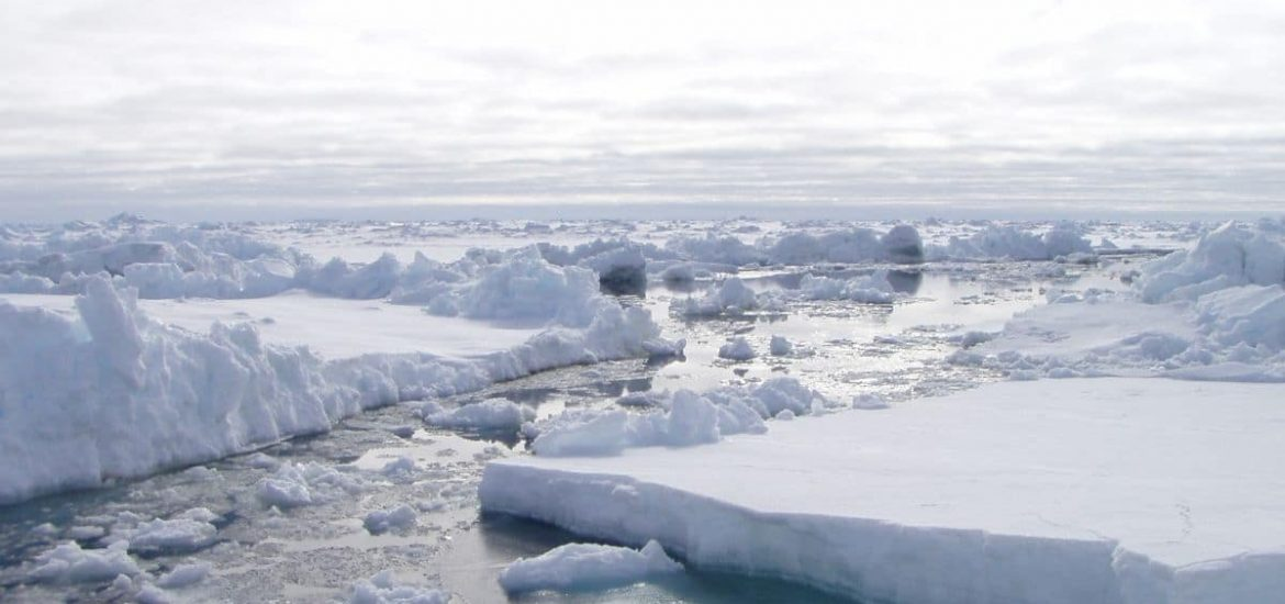 Preventing collapse of the West Antarctic Ice Sheet with artificial snow