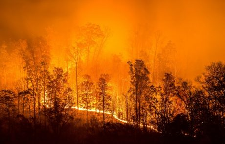 Teasing out the positives: wildfires and climate change
