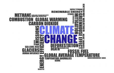 Reassessing the climate action, revisiting Baseline assumptions and avoiding 'one-fit-all' approach