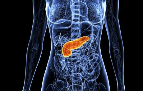 Reprogramming pancreatic cells to produce insulin
