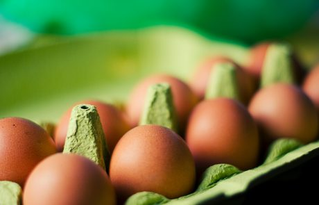"""Eggs Fipronil: what if """"organic"""" agriculture hasn't been invented yet?"""
