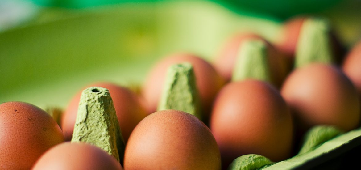 "Eggs Fipronil: what if ""organic"" agriculture hasn't been invented yet?"