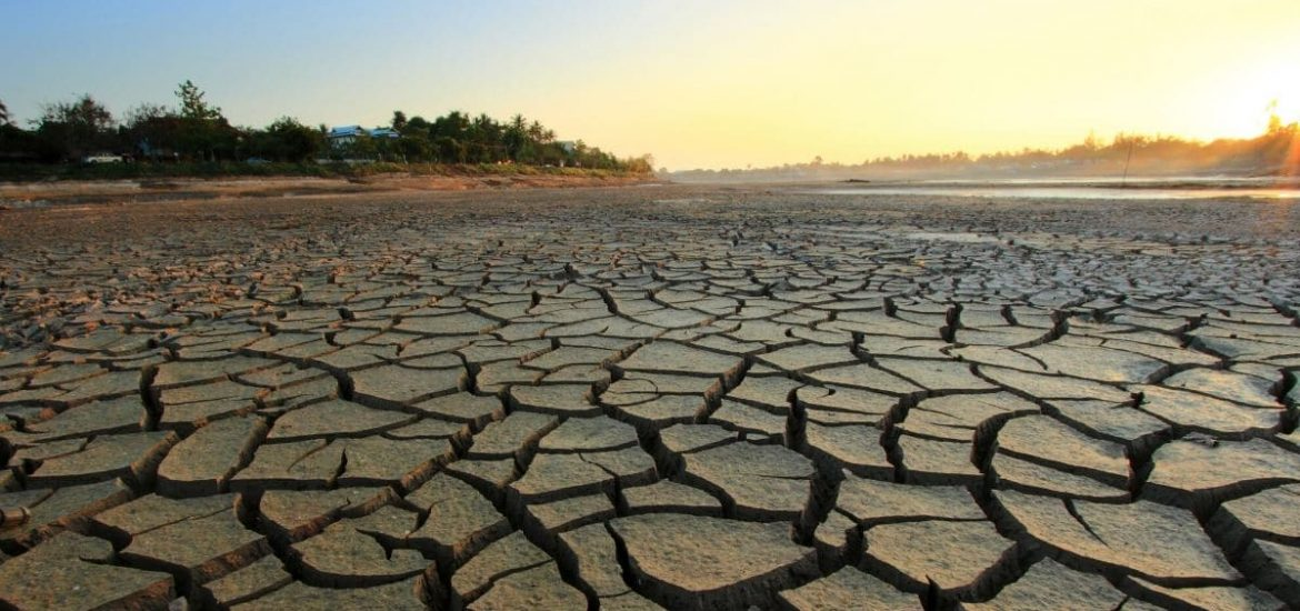 Billions could be living in unbearable heat in the next 50 years