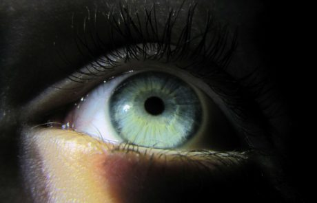 Shedding some light on blindness: photoreceptors regenerated in retinas of mice