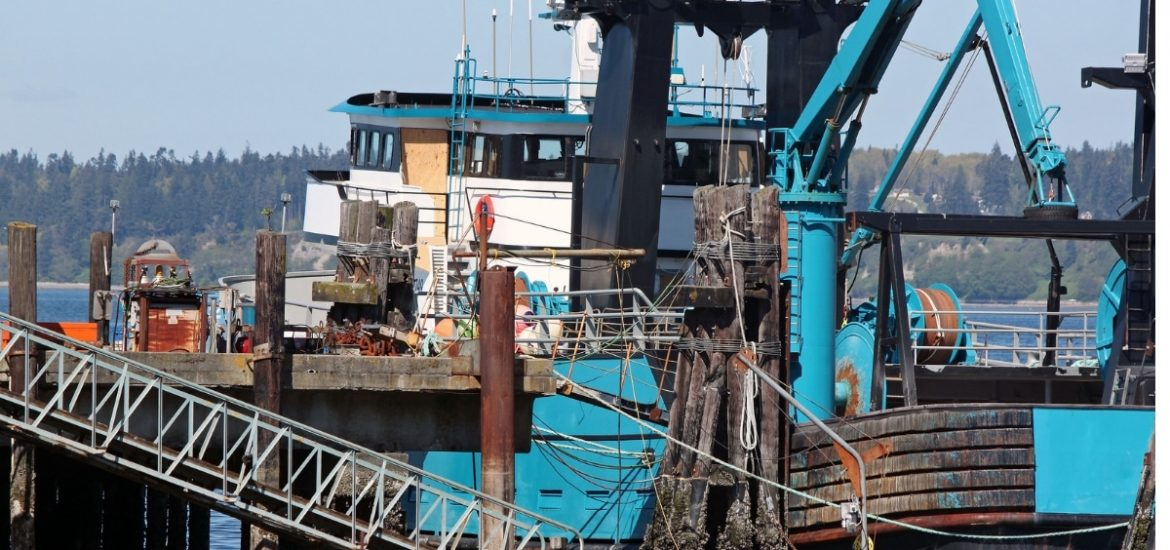 Overfishing and modern slavery – are marine workers are being exploited in the race to compete?