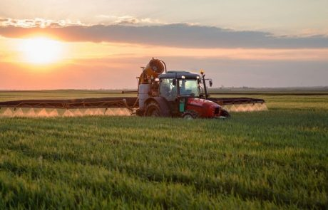 The world urgently needs an intergovernmental panel for food systems