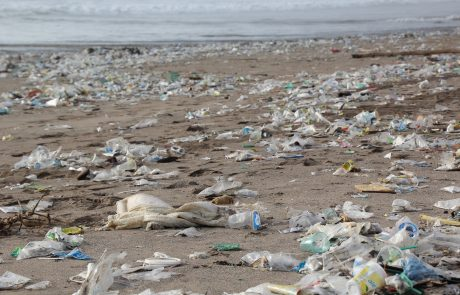 Mixed reactions to EU single-use plastics strategy