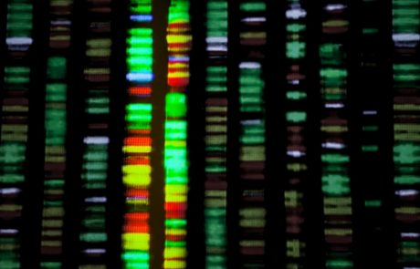 FACT CHECK: Genome-wide association studies – what do they really tell us?