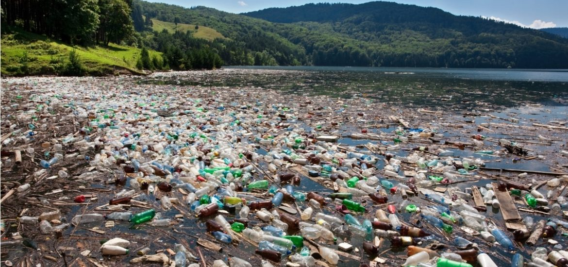 A pilot study confirms the presence of microplastics in the human gut