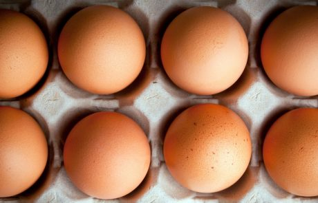 World's first no-kill eggs are making their way onto supermarket shelves in Germany