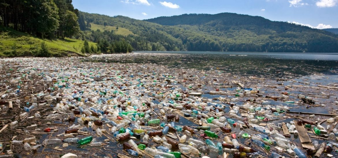 Can plastic-eating bacteria help solve the plastic pollution problem?
