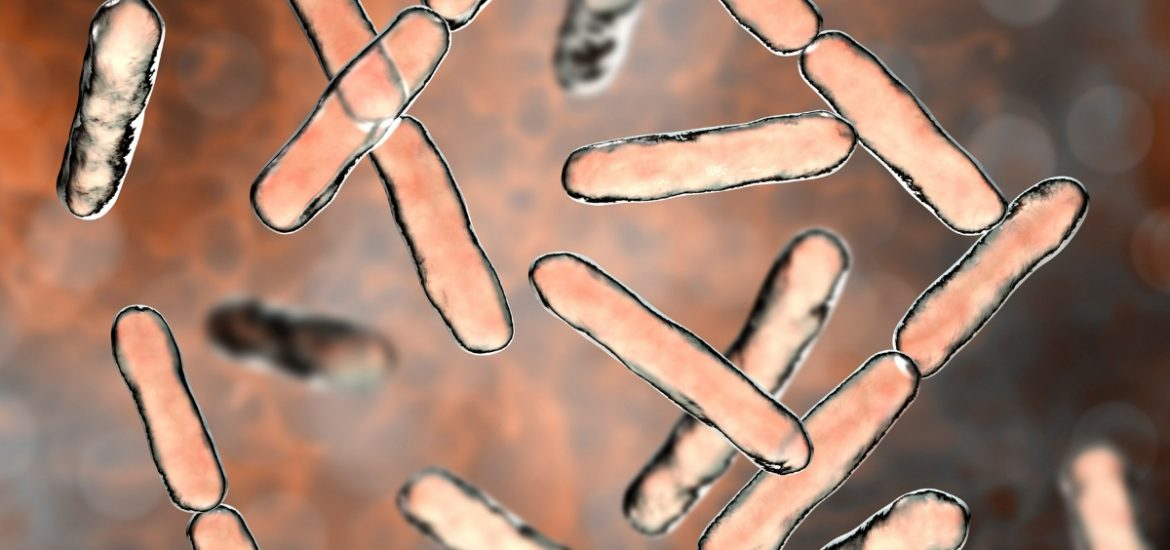 Probiotics can have negative effects, too
