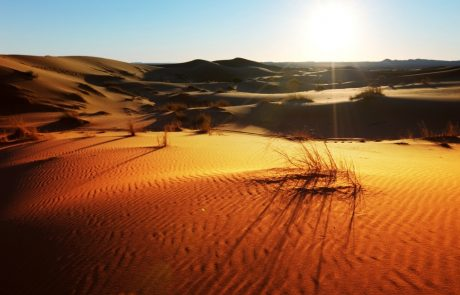 Large-scale wind and solar farms would bring more rain to the Sahara