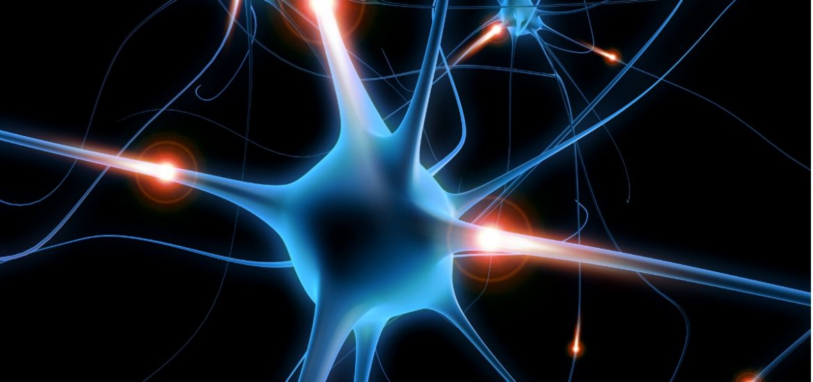 Mapping Alzheimer's: pinpointing gene expression patterns in single cells