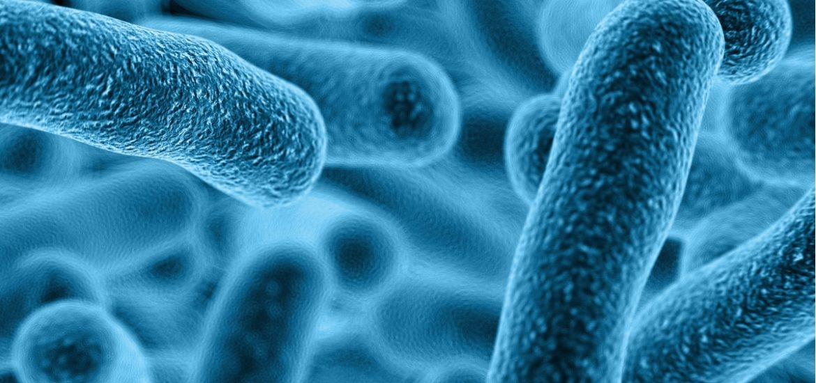 Scientists may have found a new weapon to combat superbugs