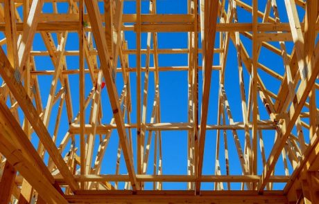 Buildings made out of timber could become an important global carbon sink