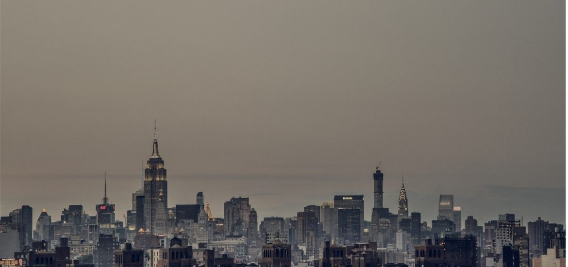 Urban pollution is having cascading effects on plant and insect ecosystems