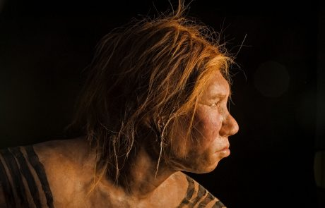 Scientists successfully rebuilt the complete genome of a Neandertal female