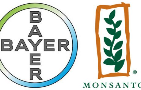 EU issues formal objection to Bayer-Monsanto merger