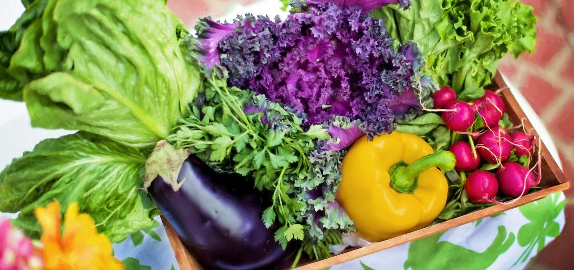 Climate change could reduce vegetable production by a third